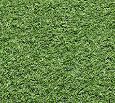 דשא סינטטי ניר 20 מ