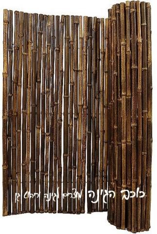 גדר ערבה| גובה 2*5